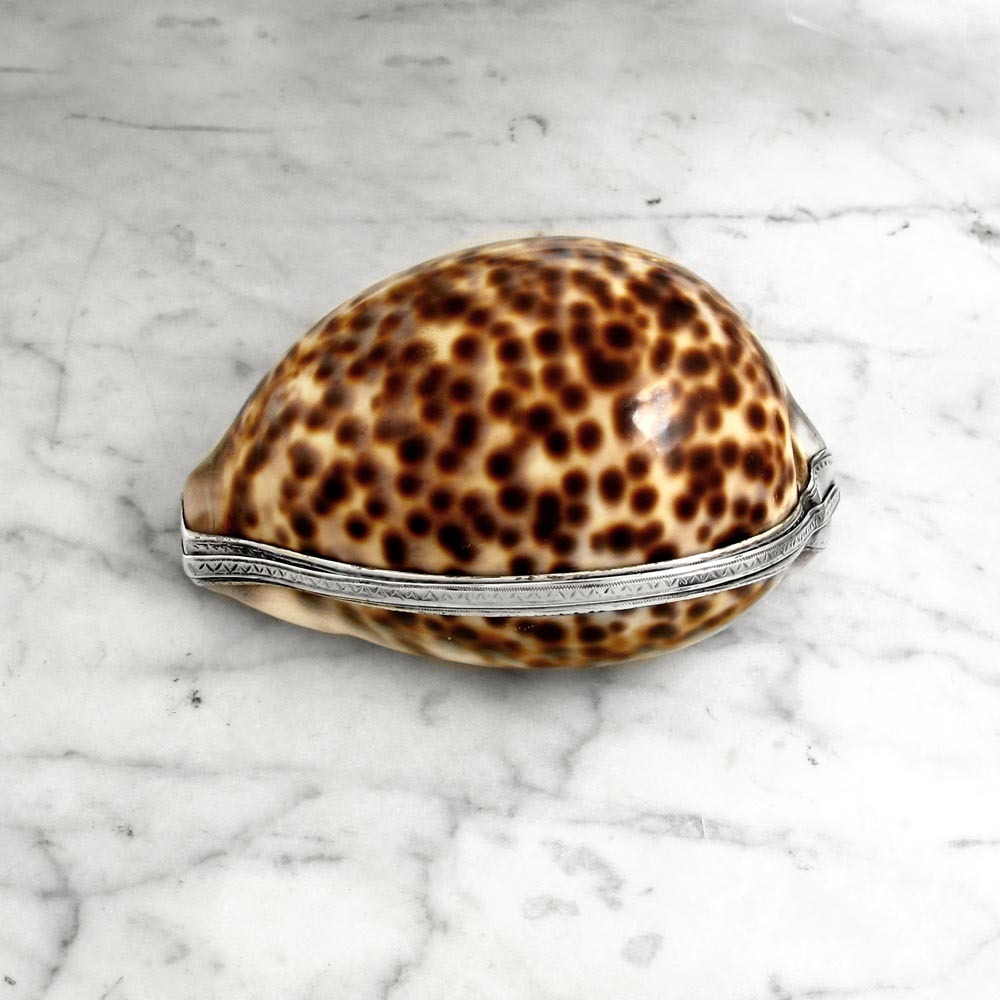 SOLD - A Large George III Cowrie Shell Snuff Box